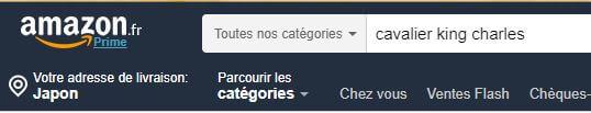 FR検索 1 - Amazon.fr(アマゾンフランス)の購入方法紹介!割引クーポン&キャンペーンコード&セールの買い方、登録方法・個人輸入買い物Amazon.fr(アマゾンフランス)購入完全ガイド2020
