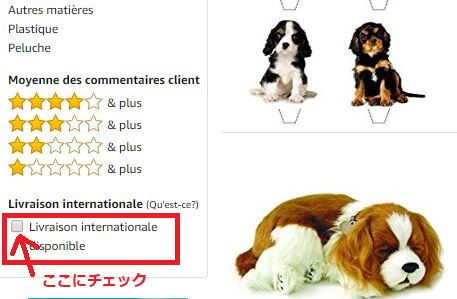 FR検索 2 1 - Amazon.fr(アマゾンフランス)の購入方法紹介!割引クーポン&キャンペーンコード&セールの買い方、登録方法・個人輸入買い物Amazon.fr(アマゾンフランス)購入完全ガイド2020