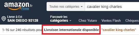 FR検索 3 1 - Amazon.fr(アマゾンフランス)の購入方法紹介!割引クーポン&キャンペーンコード&セールの買い方、登録方法・個人輸入買い物Amazon.fr(アマゾンフランス)購入完全ガイド2020