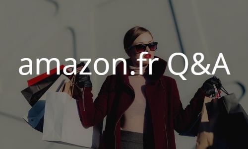 アマゾンフランスAmazon.frの買い方個人輸入Q&Aトラブル解決やお得な情報満載
