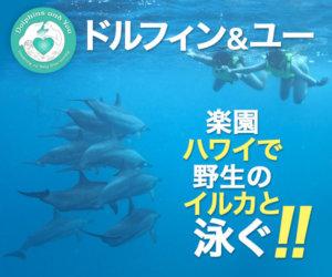 s00000018987001 300x250 - 海外通販・個人輸入おすすめ海外通販30選!日本語でもOK
