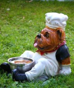 dog bowl 1567061 960 720 251x300 - 【いつまでも健康な愛犬へ】ドッグフードおすすめ人気ランキング9選!